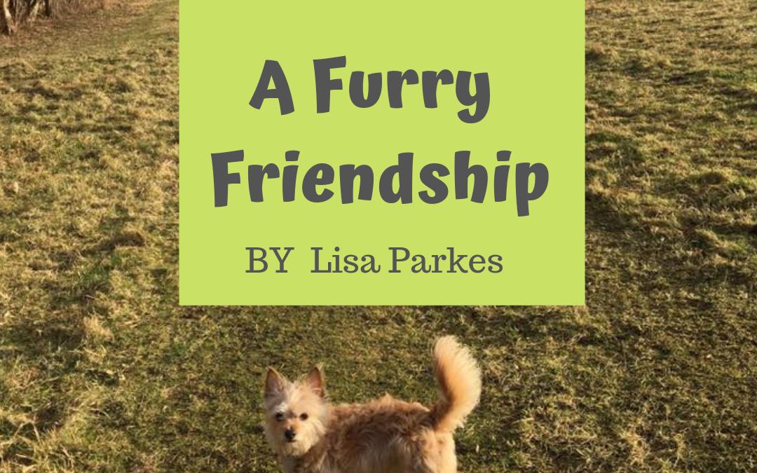 A Furry Friendship